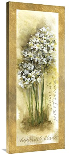 Global Gallery - Hyacinth wall decorations - flower wall decor