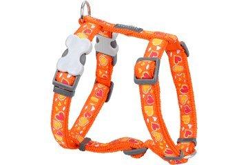 Red Dingo Designer Dog Harness, Medium, Breezy Love Orange