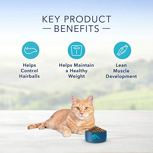 Blue Buffalo Indoor Hairball & Weight Control Natural Adult Dry Cat Food 6