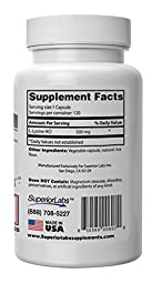 Superior Labs L-Lysine 100% Natural 500mg Dietary Supplement, 120 Vegetable Capsules