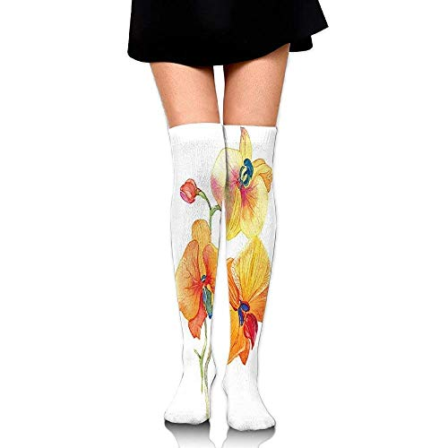 VBTY Orchid Petals Wild Flower Exotic Fragrance Pure Florets Women Knee High Socks Length 236 At Amazon Womens Clothing Store