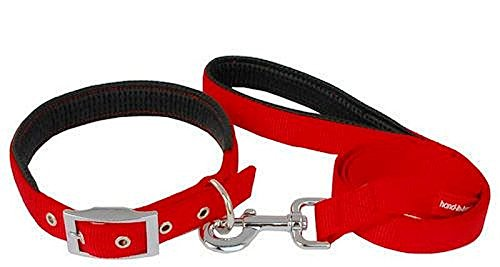 Smarty Pet Padded Nylon Dog Collar and Leash Set, Red, 1 Inch
