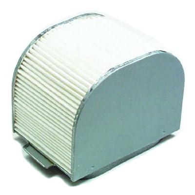 Hiflofiltro HFA4609 Premium OE Replacement Air Filter: Automotive