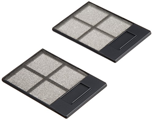New-Replacement Air Filter - V13H134A13 by Epson
