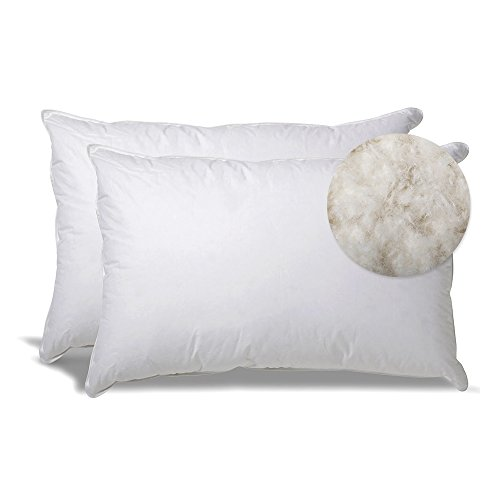 Extra Soft Down Filled Pillow for Stomach Sleepers w/ Cotton Casing 2 Pack - Filled and Finished in the USA, Set of 2 Standard by eLuxurySupply