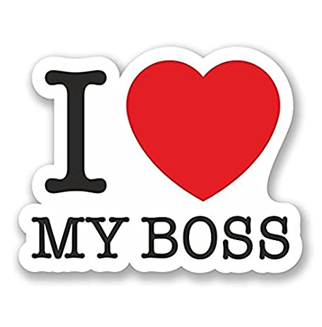 I Love My Boss WINDOW CLING STICKER Car Van Campervan Glass
