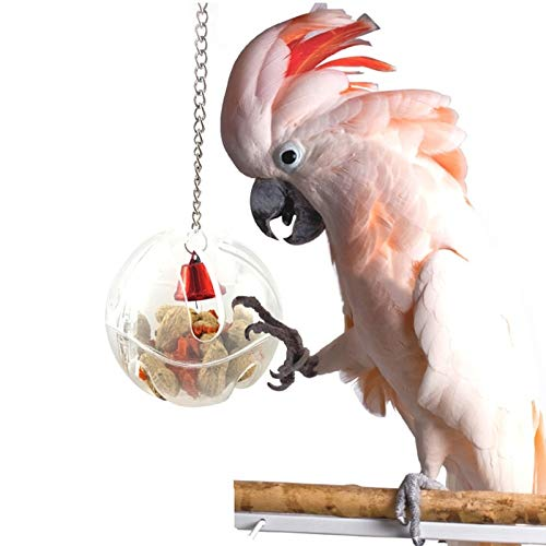 Bird Toys - Parrots Ball Toys Food Feeder Hanging Cage Birds Bell Aging Treats - Parts Kits Cockatoo Kids Parrot Music Made Hang Basketball Items Pinata Electronic Cats Ball That Dollars -