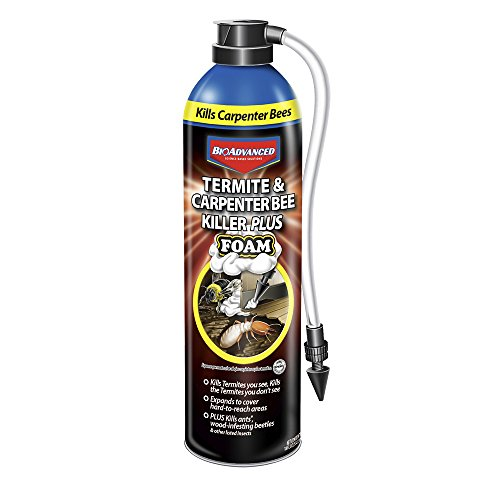 BioAdvanced 700420A Termite & Carpenter Bee Killer Plus Foam Pesticide, 18 oz, Spray