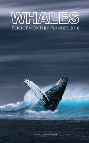 Read Online Whales Pocket Monthly Planner 2018: 16 Month Calendar pdf