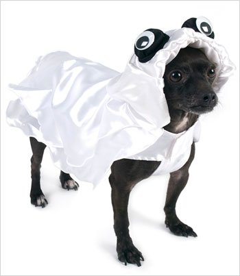 Zero The Ghost Dog Costume (Ghost Deluxe Costume for Dogs by Puppe Love (Size 0 (7.25