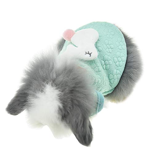 FLAdorepet Cute Bunny Rabbit Clothes for Small Animal Ferret Costume Guinea Pig Accessories (XXS(Chest 10.2