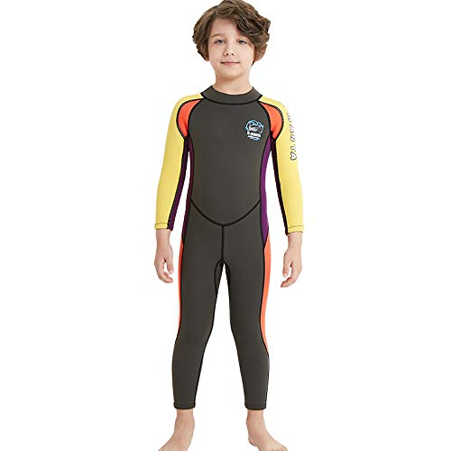 DIVE&SAIL Kids 2.5Mm Long Sleeve One Piece Full Body Wetsuit Uv Protection Thermal Swimwear Keep Warm for Scuba Diving Surfing Snorkeling Swimming Fishing for Boys Girls (Grey, Large)