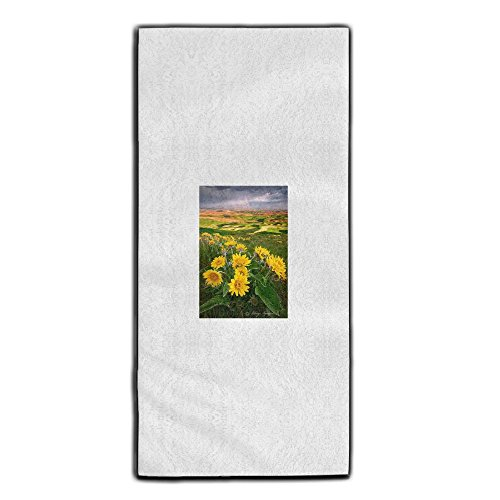 Palouse Sunset Washington State Decorative Kitchen Towels Perfect Vintage Modern Funny For Thanksgiving And Christmas Gifts