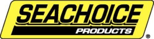 Seachoice 50-34111 Charni/ère de Porte en Acier Inoxydable 38 mm x 102 mm 2 Pi/èces