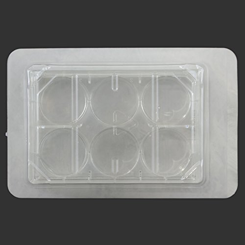 6 Well Cell and Tissue Culture Plates, Surface Treated, Sterile, Case of 50 by Syringa Lab Supplies (Image #3)