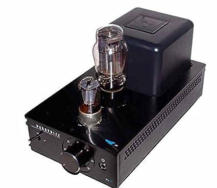 Auriculares GOWE amplificador de válvulas-aseado technics amplificador de auriculares Frecuencia: personalizado 8~