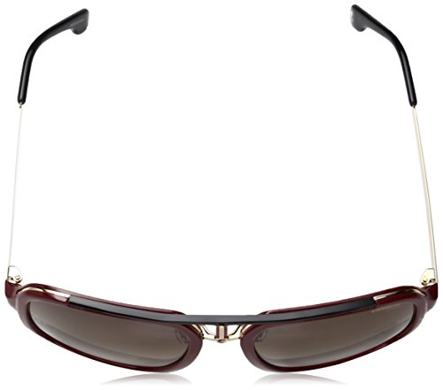 Carrera Brwn Rojo Sonnenbrille S Red Sf 1004 Gold gagxrq
