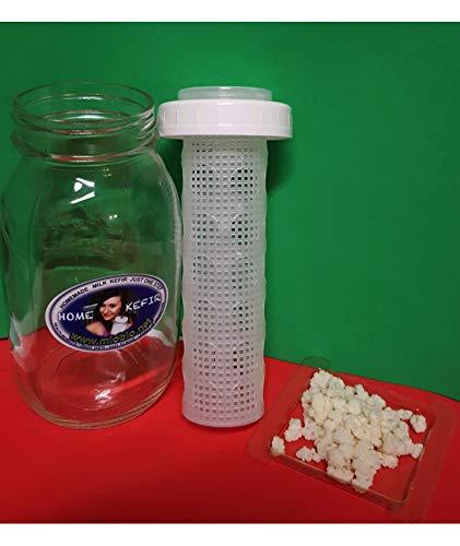 Kefir Fermenter for Rapid Fermenting with Large Container for Kefir Grains 0.6 L/20 oz WITH KEFIR GRAINS