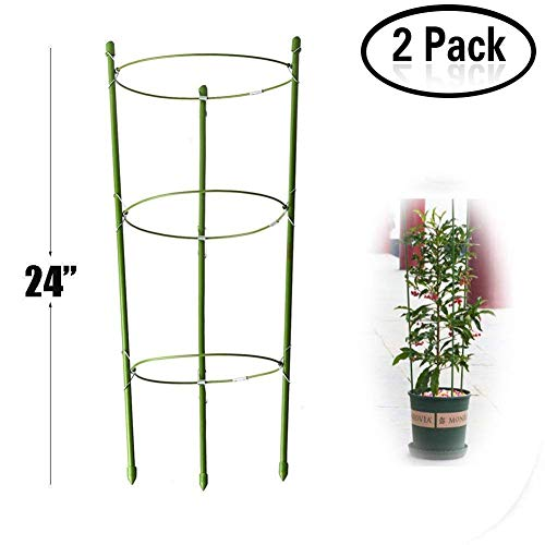 Lobesea Plant Support Ring Garden Trellis Flower Stainless Steel Support Climbing Vegtables&Flowers&Fruit Grow Cage with 3 Adjustable Rings 24''(2PCS) by Lobesea