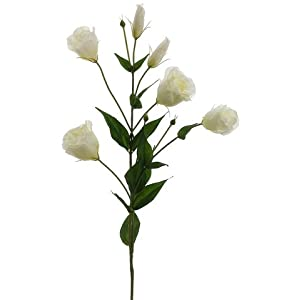 "34"" Lisianthus Spray White (Pack of 12) 36"