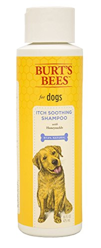Burts Bee Itch Soothing Shampoo, 16-Ounce (Burts And Bees Pets)