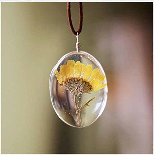 2 2018 Women Jewelry Long Rope Chain Dried Flower Glass Pendant Necklace Sunflower Necklace