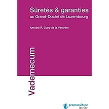 Suretés et garanties au Grand-Duché de Luxembourg (Vademecum) (French Edition)