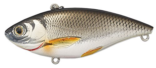 Koppers Shiner Trap Golden Sinking Lure, 1/4-Ounce, Silver/Black Rattle