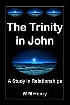 The Trinity in John: A Study in Relationships by [Henry, W M]