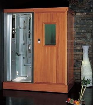 DS204 Platinum Steam Shower And Sauna Combo Unit With Steam Sauna  Accupuncture Massage Hydro Massage Jets