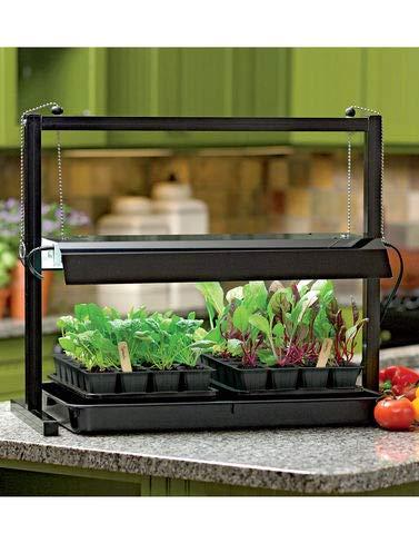 Grow Light Kitchen Herb Garden in US - 6