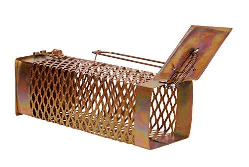 Krisah® (22 X 8 X 9) Diamond Cut Design Iron Rat/Mouse/Rodent Trap Cage/Catcher (Medium)