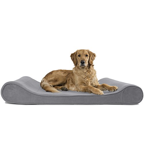 Furhaven Pet Jumbo Microvelvet Luxe Lounger Orthopedic Pet Bed, Gray, Jumbo
