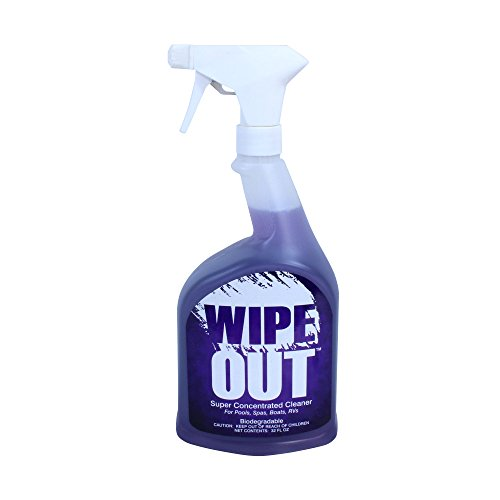 Wipe Out 6012 All Purpose Surface Cleaner for Swimming Pools, 1-Quart (Vinyl Pool Stains)