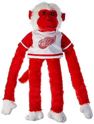 Detroit Red Wings 27