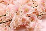 Homcomoda 2 Pack Artificial Silk Cherry Blossom