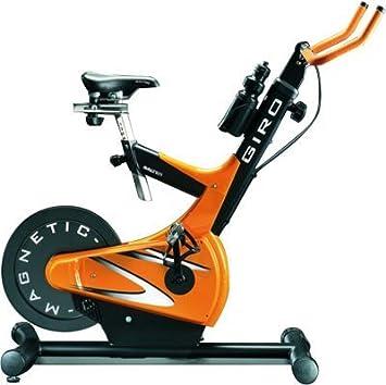 Salter Bicicleta de Spinning Profesional Indoor Giro: Amazon.es ...