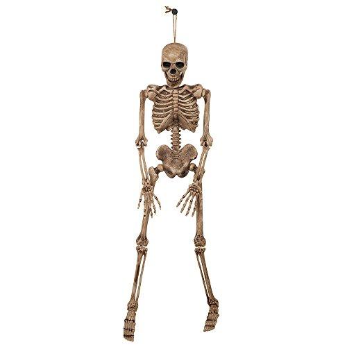 Bristol Novelty HI334 Skeleton, Brown/Beige, One Size