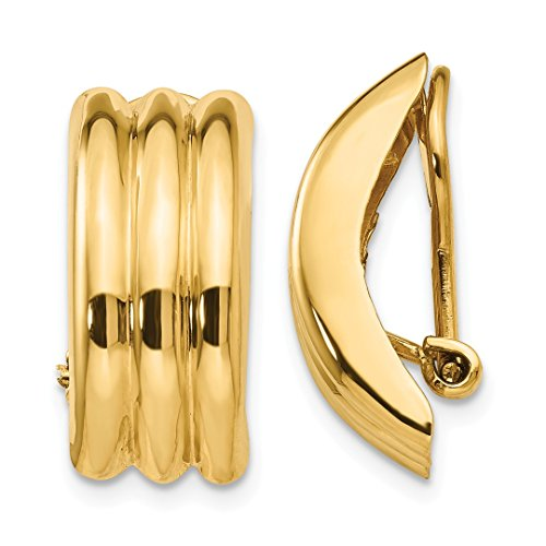 ICE CARATS 14k Yellow Gold Omega Clip Non Pierced On Earrings Fine Jewelry Ideal Mothers Day Gifts For Mom Women Gift Set From Heart by ICE CARATS