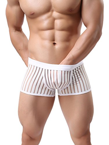 Men's Soft Underwear Sheer Transparent Brief Boxer Trunks White, Medium (Sheer Boxers Spandex)