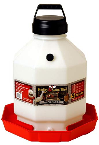 Miller Little Giant Plastic Poultry Waterer