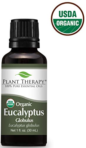 Plant Therapy Certified USDA Organic Eucalyptus Essential Oil 30 mL (1 oz) 100% Pure, Undiluted, Therapeutic Grade