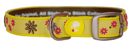 Dublin Dog Waterproof Dog Collar, Medium 13 inches - 18 inches, Sun Spot
