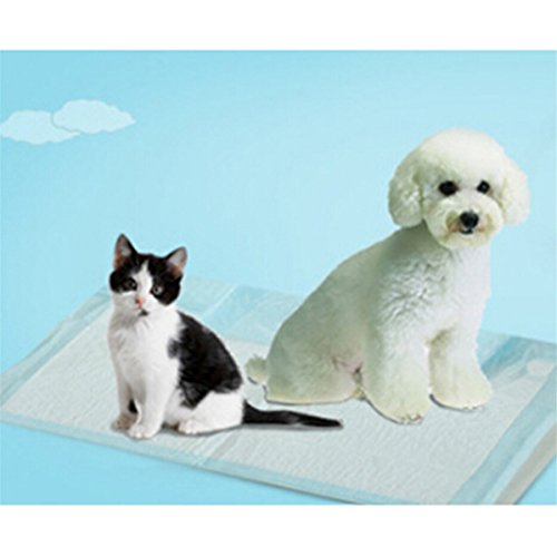 UNKE 5Pc Disposable Dog Puppy Diapers Nappy Cat Pee Training Pads Toilet Pet (Training Pad Package)