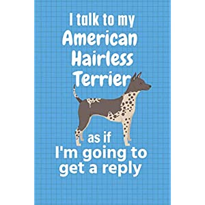 I talk to my American Hairless Terrier as if I'm going to get a reply: For American Hairless Terrier Puppy Fans 20