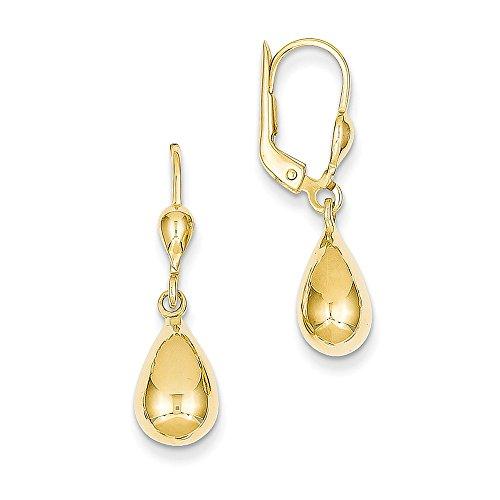 14k Gold Polished Fancy Dangle Leverback Earrings (1.14 in x 0.28 in)