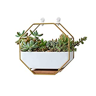 "VanEnjoy 7"" White Ceramic Wall Planters Vase and Copper,Drainage Hole with Bamboo Tray - Succulent Pot Air Plants Mini Cactus Artificial Flowers Hanging Geometric Hexagon Wall Decor (Gold Metal)"