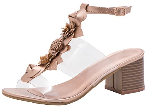 (Cambridge Select Women's Open Toe T-Strap Clear See Through Flower Mixed Media Chunky Stacked Block Heel Sandal (8 B(M) US, Rose Gold))