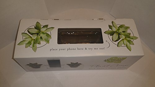 Plant Amp (Syndicate Home & Garden 3800-04-09 Plant Amp Stylish Accent Planter, Glass, Clear)