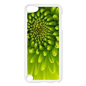 LEMON Chrysanthemum real flower Phone Case For Ipod Touch 5 [Pattern-1]